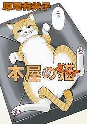 本屋の猫(あんず)